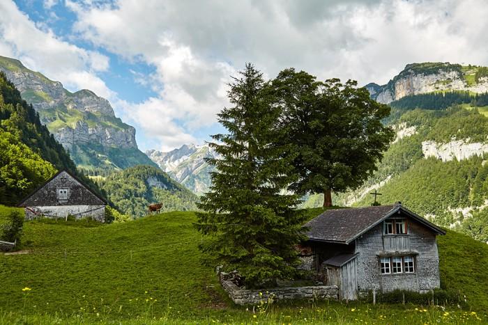 Alpstein-062015_0020